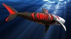 SHARK SLICE