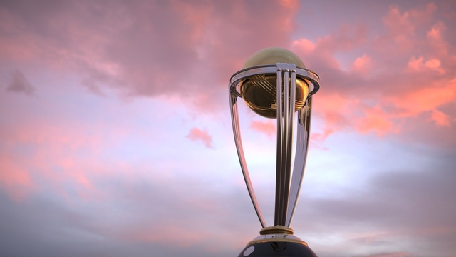Cricket World Cup trophy 3d modelling