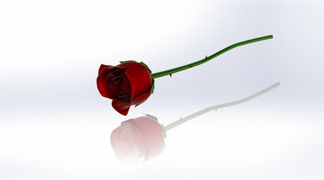 rendering-rose