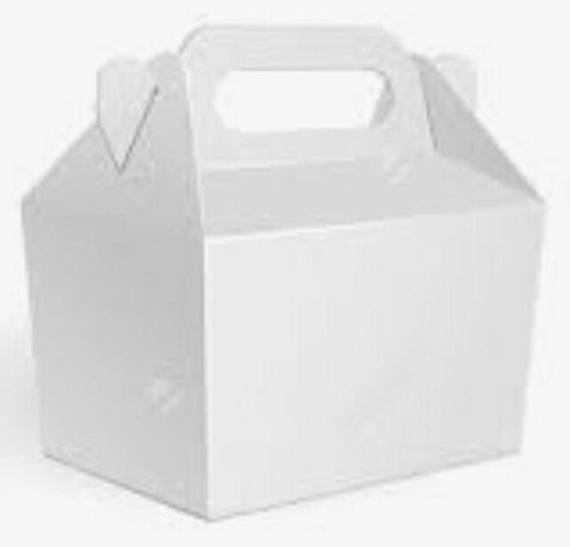Box with carry handle