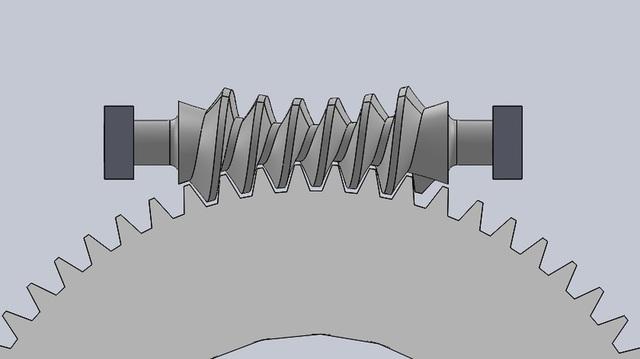 Double enveloping Gear