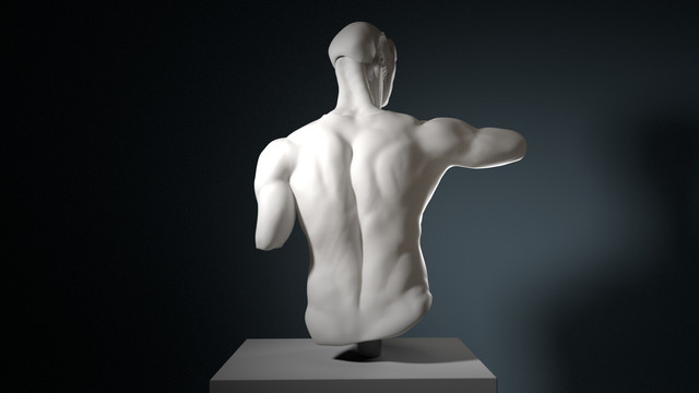 3D Sculpting Human Anatomie Study and 3D Printed Head