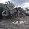 Triceratops Skeleton Sculpture