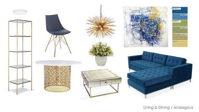 Blue & Orange Furniture Plan